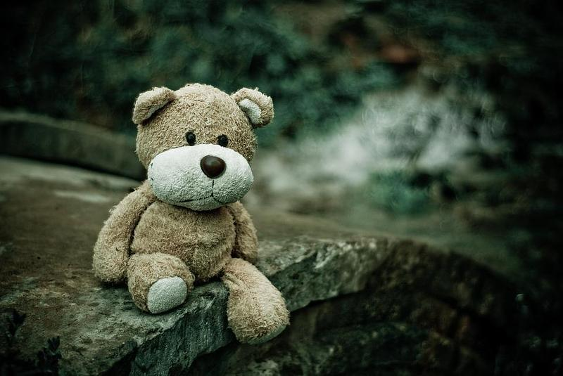 Abandoned teddy in a wood